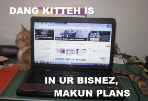 dang kitteh is in ur bisnez, makun plans